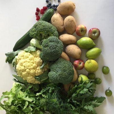 Workshop: Vegane Kochkunst für Anfänger